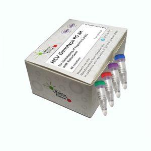 کیت ریل تایم HCV Genotype RG (تعیین ژنوتایپ ویروس هپاتیت C با دستگاه RG)