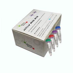 کیت ریل تایم HTLV 1 RQ( تشخیص و کمیت سنجی پرو ویروس HTLV1)
