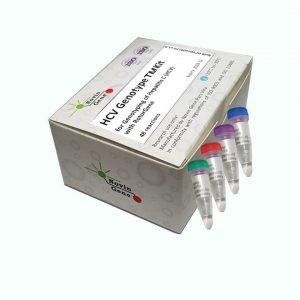 (HCV Genotype (TM