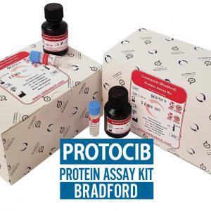 کیت سنجش پروتئین به روش برادفورد- 30 میلی لیتری